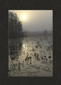 Second Place Illustrative - Sunrise On the Swamp - Pat Hutton