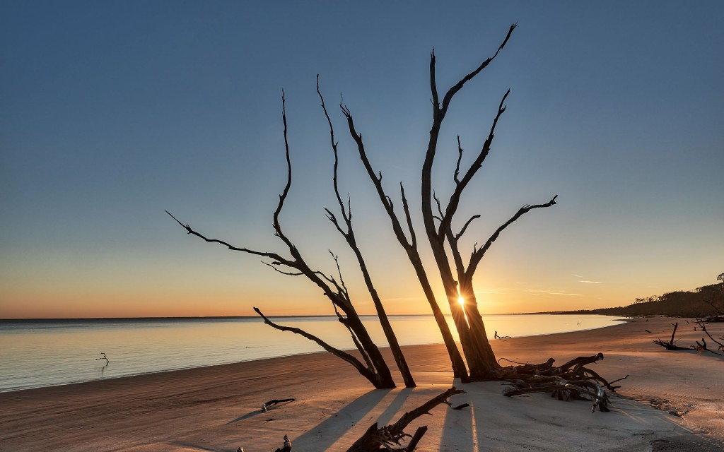 Sunrise at Big Talbot Island, part of the Timucuan Ecological and Historic Preserve Tuesday, December 12, 2017 in Jacksonville, Florida. (www.willdickey.com)
